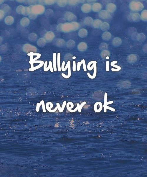 Bullying is never ok